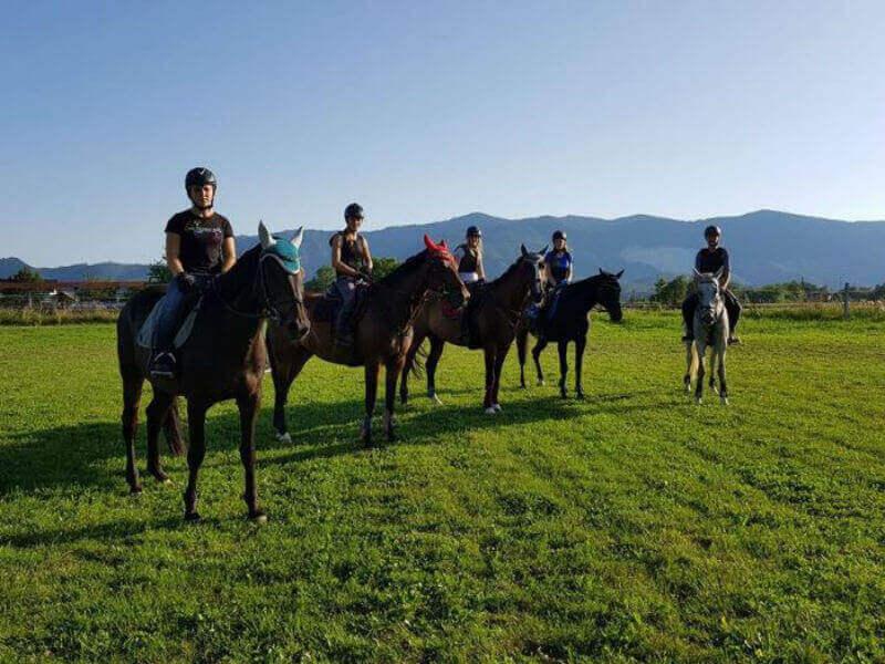 Konjeniški klub PrKral 1