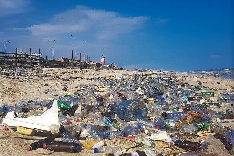 Zgodba o plastiki bo zazvonila alarm za ohranjanje biodiverzitete
