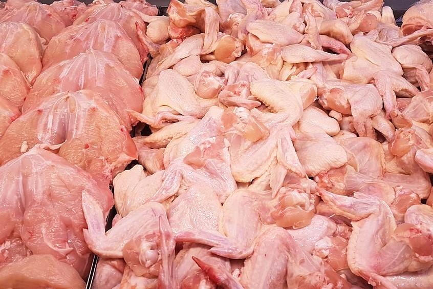Slovenski piščanci lahko odpotujejo na Kitajsko