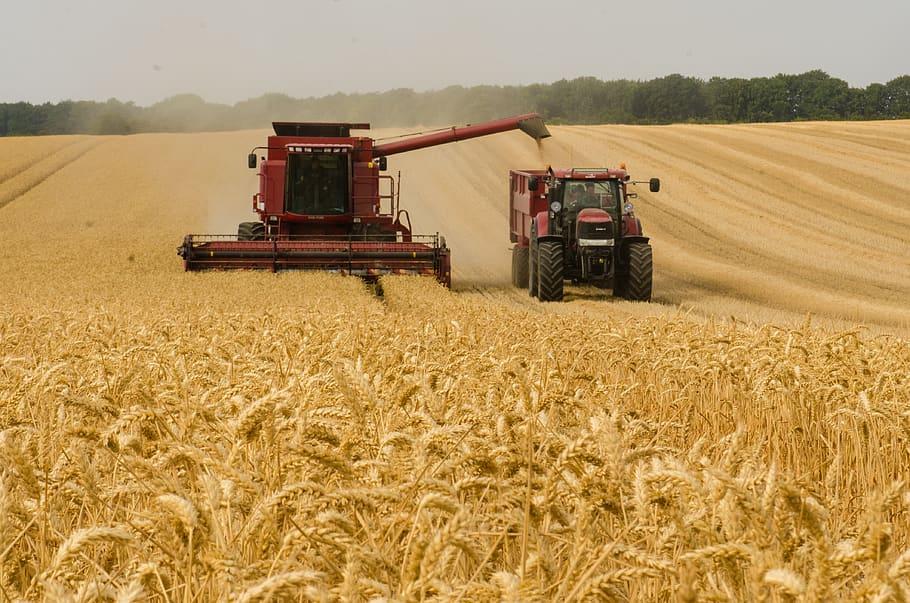 Nov razpis za skupinsko delovanje v kmetijskem in gozdarskem sektorju